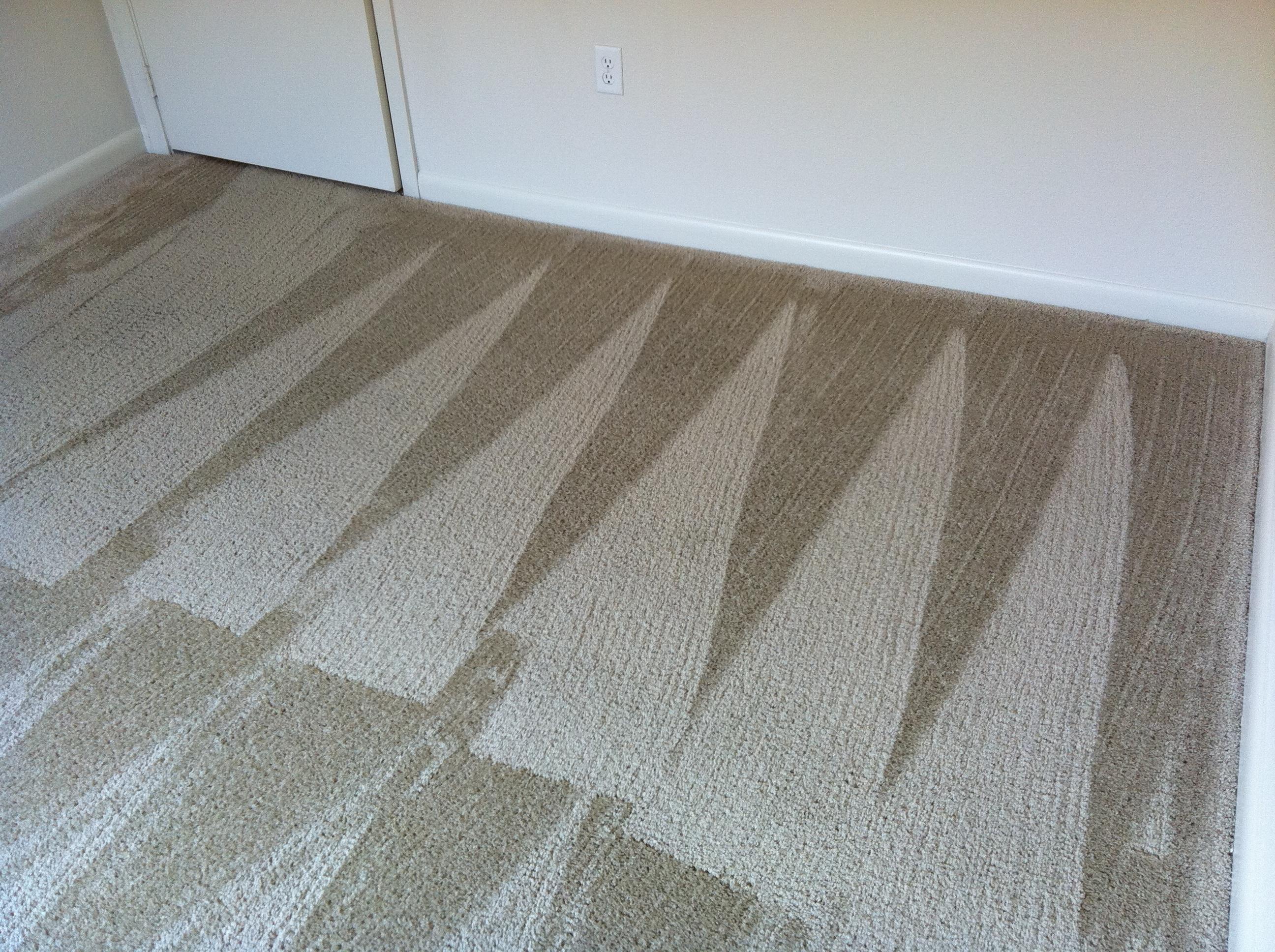 High Traffic Carpet Cleaner