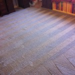 Heavily Stained Carpet (After)