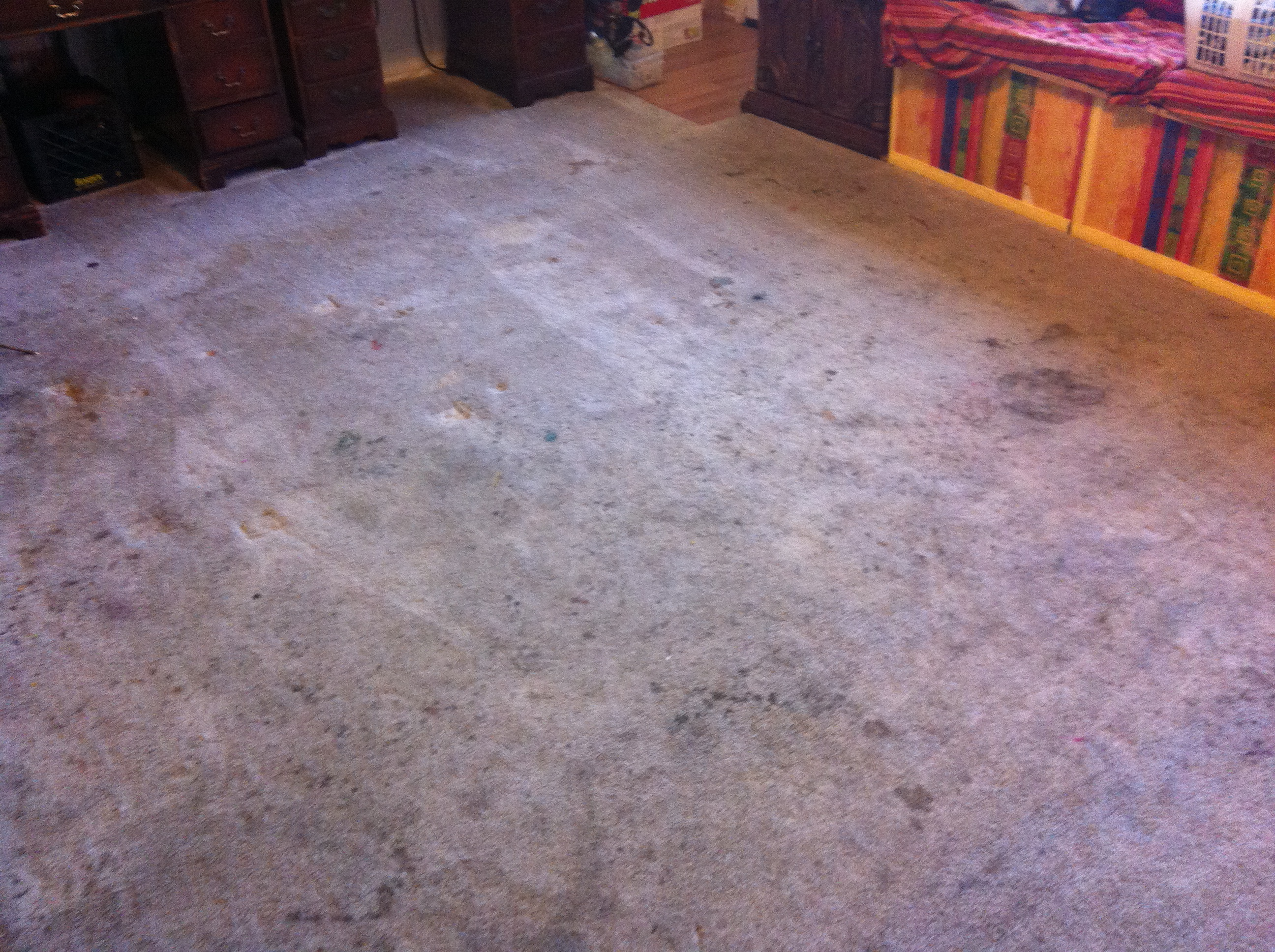 How To Clean Heavily Stained Carpet Nrtradiant