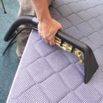 Hand Bed Cleaning