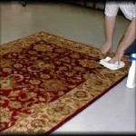 Rug Spot Cleaning