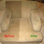 Upholstery Cleaning (Before & After)