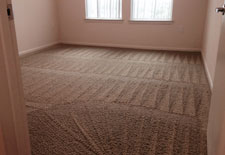Apartment Complex Carpet Cleaning