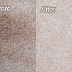 Carpet Cleaning Job