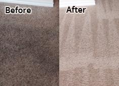 Carpet Cleaning Job in Arlington