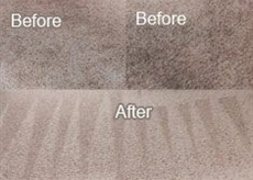 Carpet Cleaning in Irving, Texas