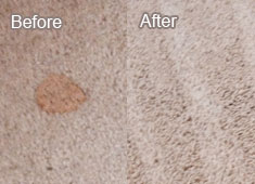 Carpet Cleaning North, Texas