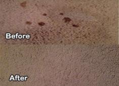 Carpet Cleaning Framer Branch, Texas